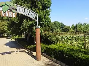 Dsc_4418