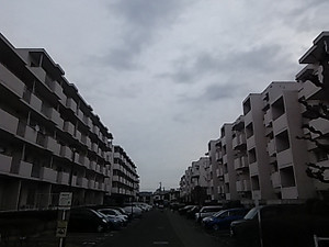 00860001_1_2